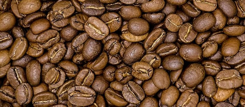 Exciting New Coffee Beans to Try Out